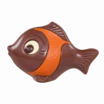 Afbeeldingen van Visjes met oranje accent