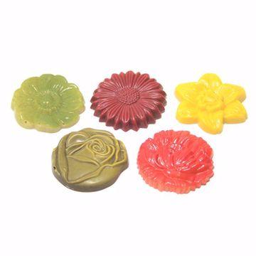 Afbeeldingen van Bloemen gekleurd