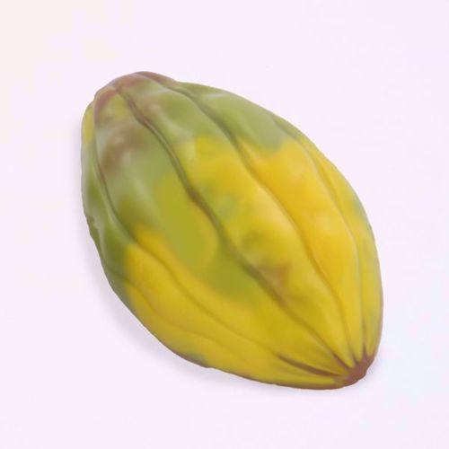 Afbeelding van Cacaoboontjes